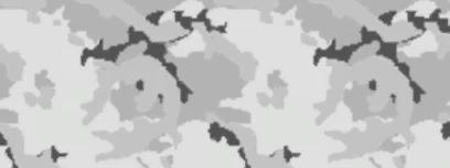 codmw2_ArcticCamo