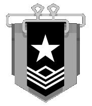silver 1 rank